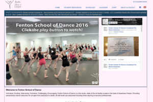 FSD Screenshot May 2017